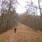 10:35 広々とした防火林帯が登山路