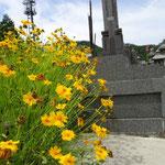 9:53 墓の周りは花でいっぱい