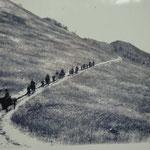 笠取山は昔は木が伐採されて丸坊主、植林して保水林にしました