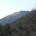 14:17 今登った大野山を眺める