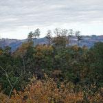 12:36 石尊山から眺める官ノ倉山