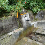 23日 この登山路いたるところに湧水があり人間の営みがあります