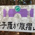 大月市のシンボルマークは笹子隧道をモチーフにしたそうだ