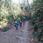 緩い坂道を登ります