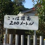 武山は標高200m
