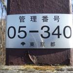 13:11 ここがソーヤノ丸デッコ(山名標識はありません)