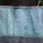 12:28 馬乗馬場の紙製の標示