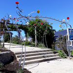 Pergola en fer forgé style végétal en entrée de roseraie