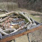 Fertige Plattform für Fischadler von uns gebaut
