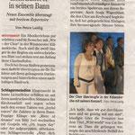 Heilbronner Stimme 2010 06 01 Wüstenrot
