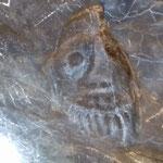 peinture néolithique d'un sorcier en ocre rouge
