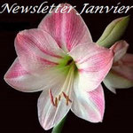 News Janvier