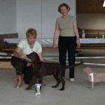 Puppy & Veteranshow Montricher, 26.5.07, VV1 + Best Puppy of Breed