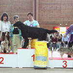 CAC Bulle, 27.6.09: V1 CAC, Best Veteran of Breed, Best of Breed, Best Veteran in Show & 3. der Gruppe 8