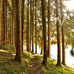 Stilles Naturerleben, Larissa Harter