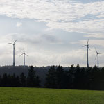 Windpark Hornberg, Sabine Moosmann