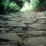 Un'immagine ravvicinata della pavimentazione romana rinvenuta vicino alla vetta di m. Bastione (m 1050 s.l.m.) mette in evidenza le possenti pietre di arenaria che costituiscono la sua struttura.