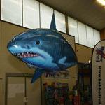 """auch fliegende """"Fische"""" gibt's an der Ausstellung..."""