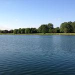 Blick auf Fühlinger See und Ufer, blauer Himmel (Foto: Anglersportgruppe Ford e. V. Köln)