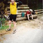 Hirsch im Harz - 2000