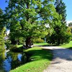 Parc Beaumont - Pau
