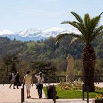 Boulevard des Pyrénées - Pau