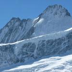 Schreckhorn vom oberen Grindelwaldgletscher