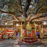 Pforte zum heiligen Bodhi Tree