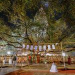 Eingang zum heiligen Bodhi Tree