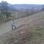 wir wollten das ändern -> intensive Bodenvorbereitungen