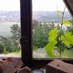 durch marode Fenster...