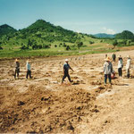 Establishment of Vineyard at Pak Chong, Khao Yai, Thailand