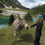 My new friend at Passo Fedaia!
