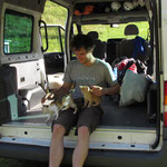 Chrissi cat baby sitting in our new van. With Garfield and Hexe.