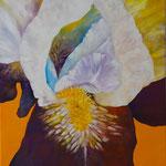 2020_Iris_80 x 60cm_Acryl_Baumwolle