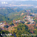 Yoshino (Yoshino-chō) is a town located in Yoshino District, Nara Prefecture, Japan.  紅葉の吉野