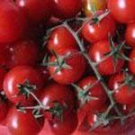 pomodorini di Pachino