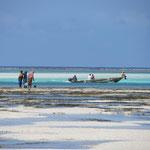 Zum Abschluss gab es ein paar Erholungstage in einem Hotel an der Ostküste von Sansibar.