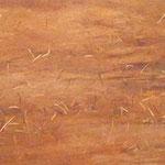 IRMA PALACIOS. Ocre-Rojo. óleo sobre tela. 60 x 100 cm. 2011.