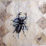 FRANCISCO TOLEDO, Escarabajo, tec.mixta/papel texturizado, 56x78cm, 2008.