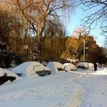 吹雪の翌日。晴れて入るもののさむい!すっかり雪に埋もれた車