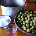 梅干し作り1