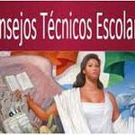 CONSEJOS TECNICOS ESCOLARES
