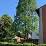 Blick auf Pavillon, Haupthaus und Nebenhaus