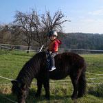auch die kleinsten Familienmitglieder sind schon Pferdeverrückt