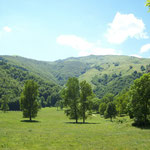 Le vallon de la grangette