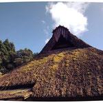 葦葺き屋根