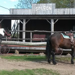 Saloon - Aire d'accueil