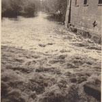 Hochwasser an der Elster