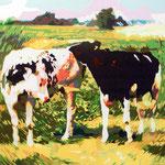 Koeien in de weiland